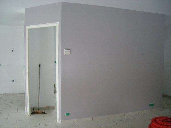 Peinture du salon s jour gris mauve blanc blog de emmamat40120 for Peinture salon gris
